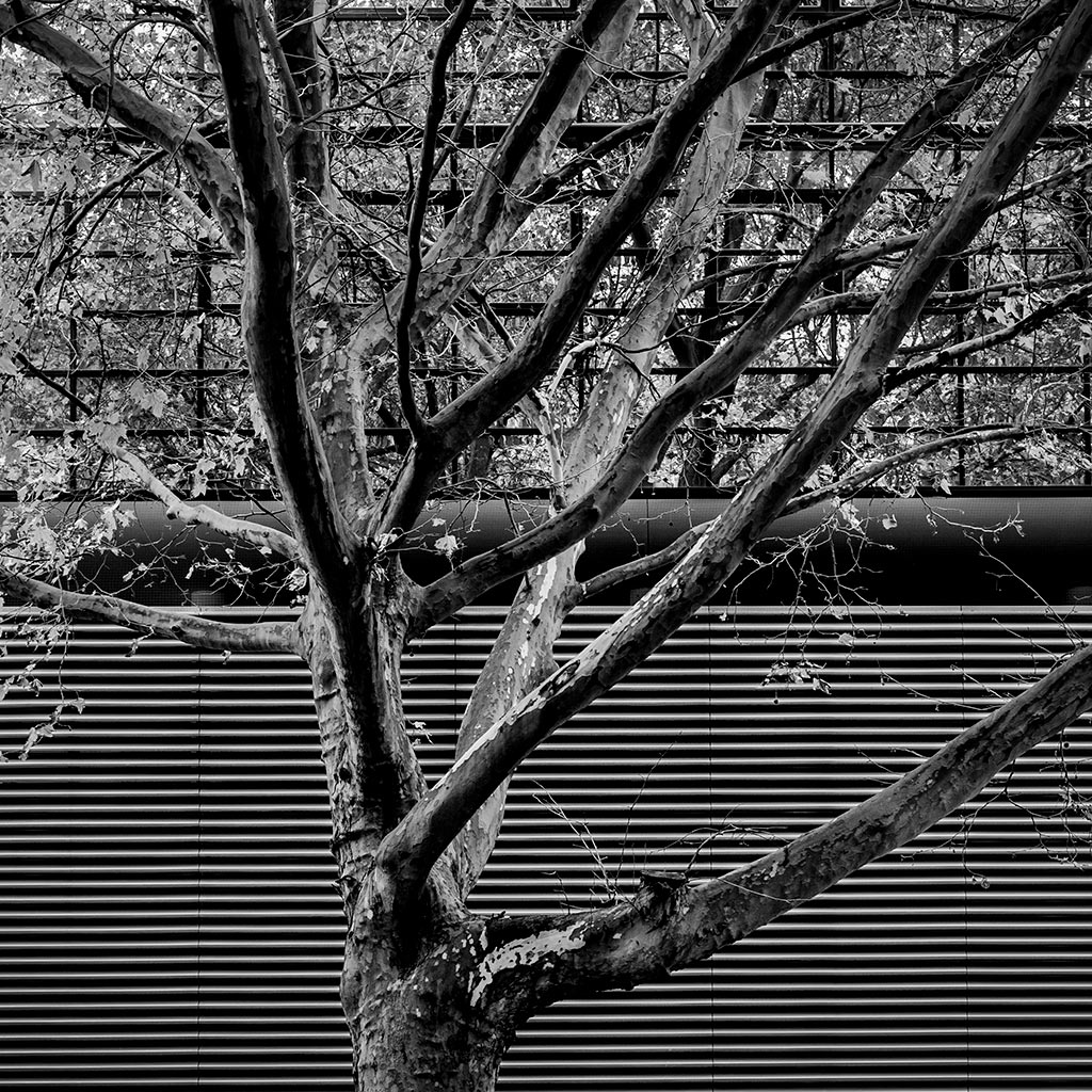 Architektur_Fotografie_Oldenburg_Harry_Koester