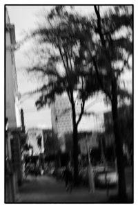 Harry_Koester_Lebensraum_Stadt