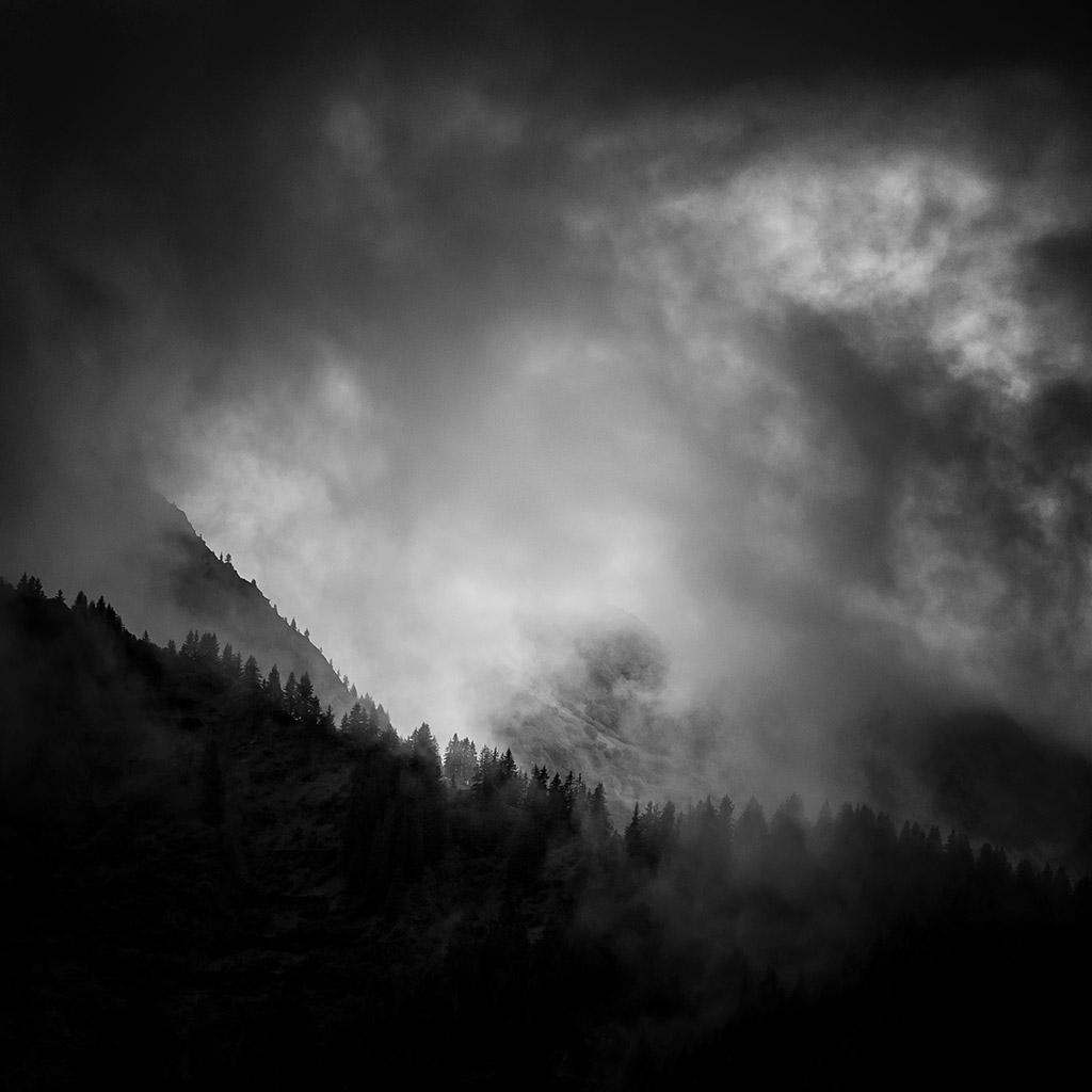 Foggy_Woods_Landscape_Harry_Koester_Fotografie_04