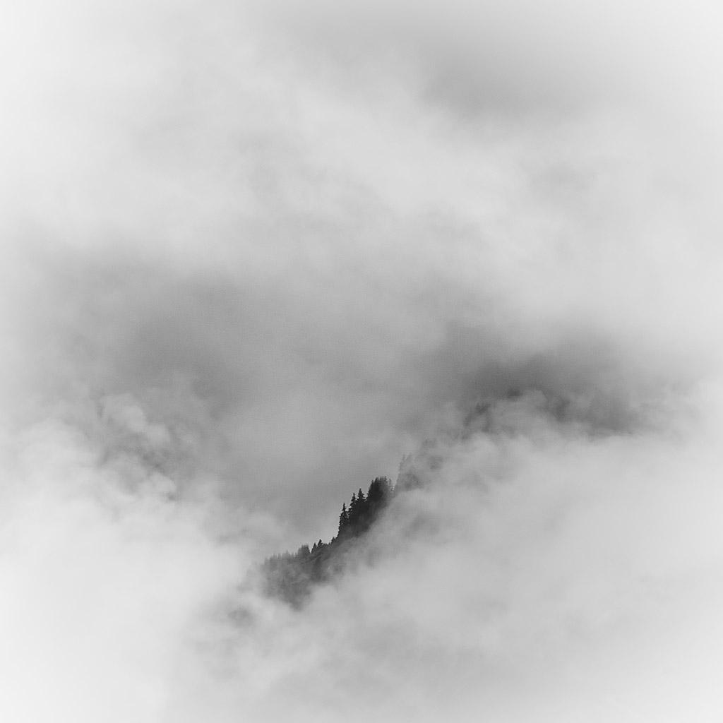 Harry_Koester_Landscape_Foggy_Woods_03